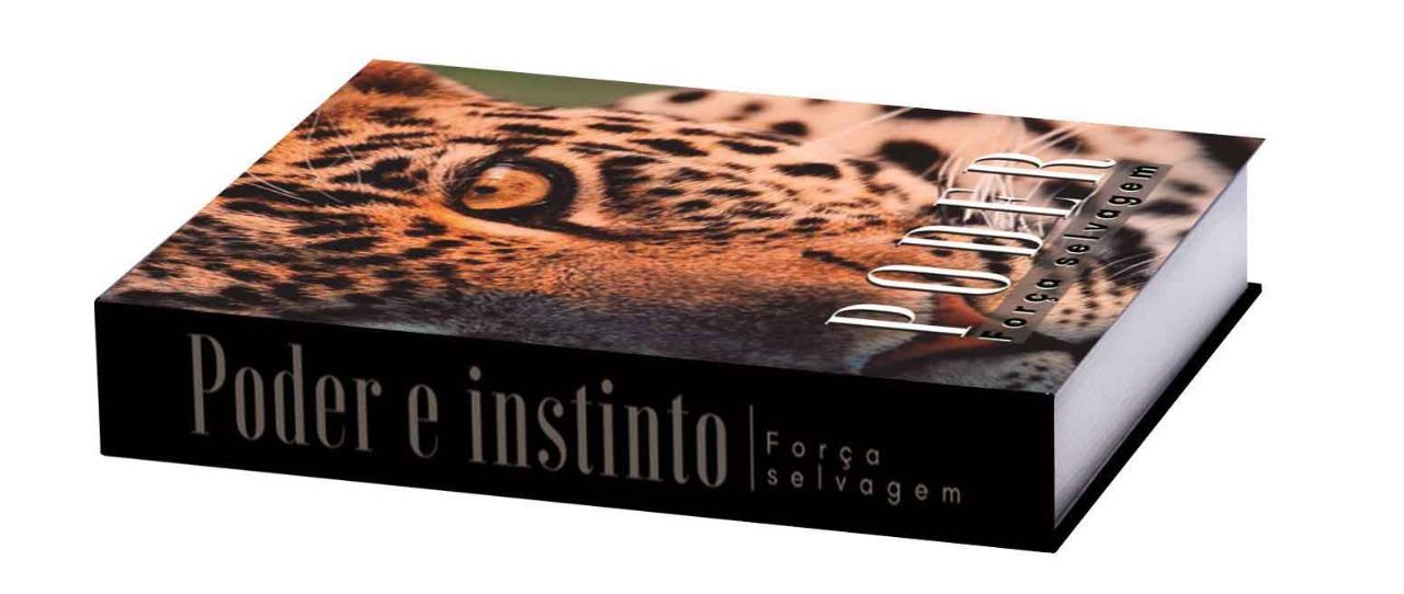 Caixa Livro Leopardo 25X18X4cm