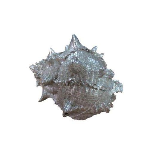 Concha Decorativa em Resina Prata