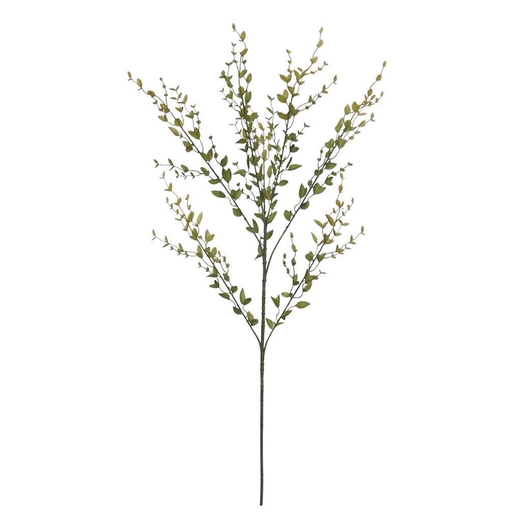 Galho de Folhas Grass Plt Verde 77cm