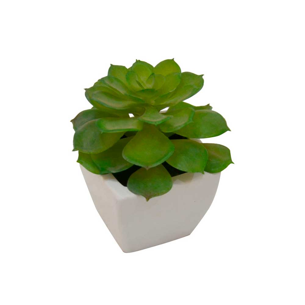 Mini Vaso Cerâmica Branco com Suculenta Flor 15cm