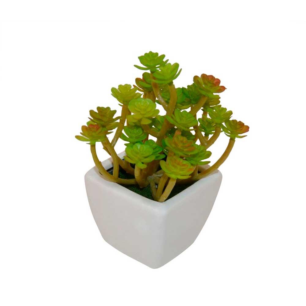 Mini Vaso Cerâmica Branco com Suculenta Flores 15cm
