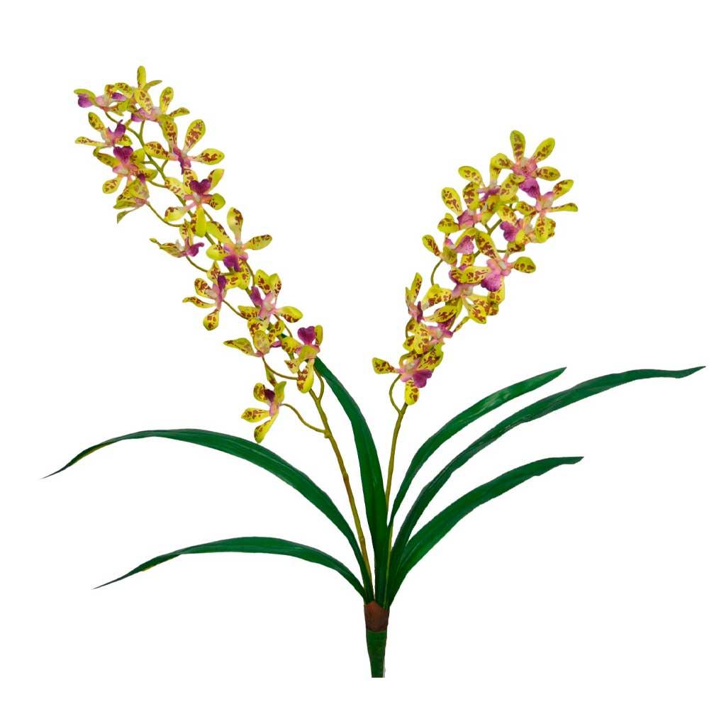 Orquídea Artificial Verde X2 Hastes com Folhas 64cm