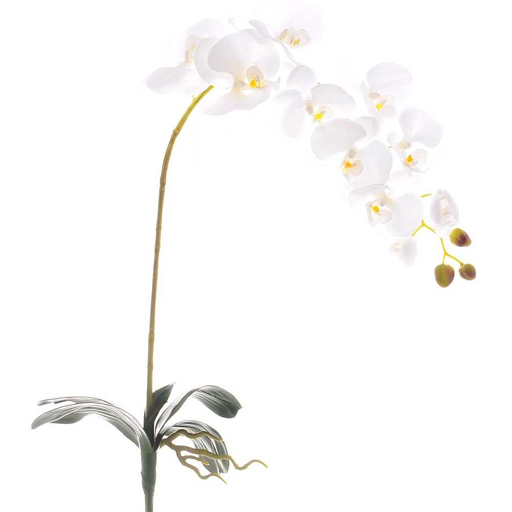 Orquídea Artificial Tecido Env X10 Branca com Folha e Raiz 85cm