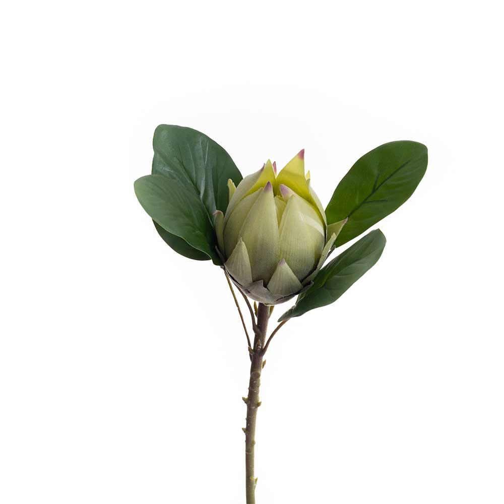 Protea Artificial Verde com Folha 50cm