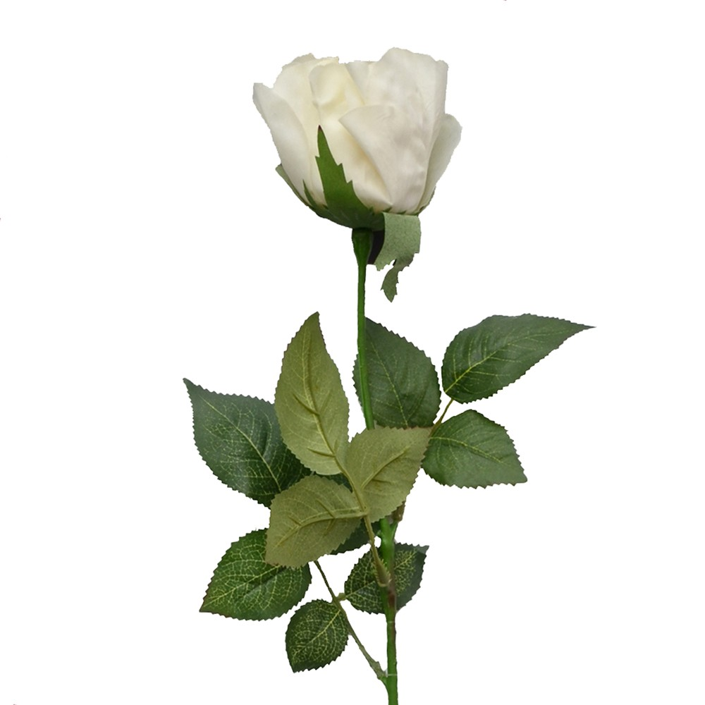 Rosa Toque Real Branco 70cm