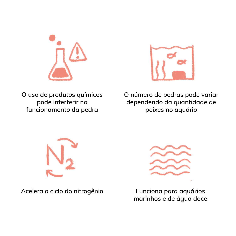 Eco Bio-Block P