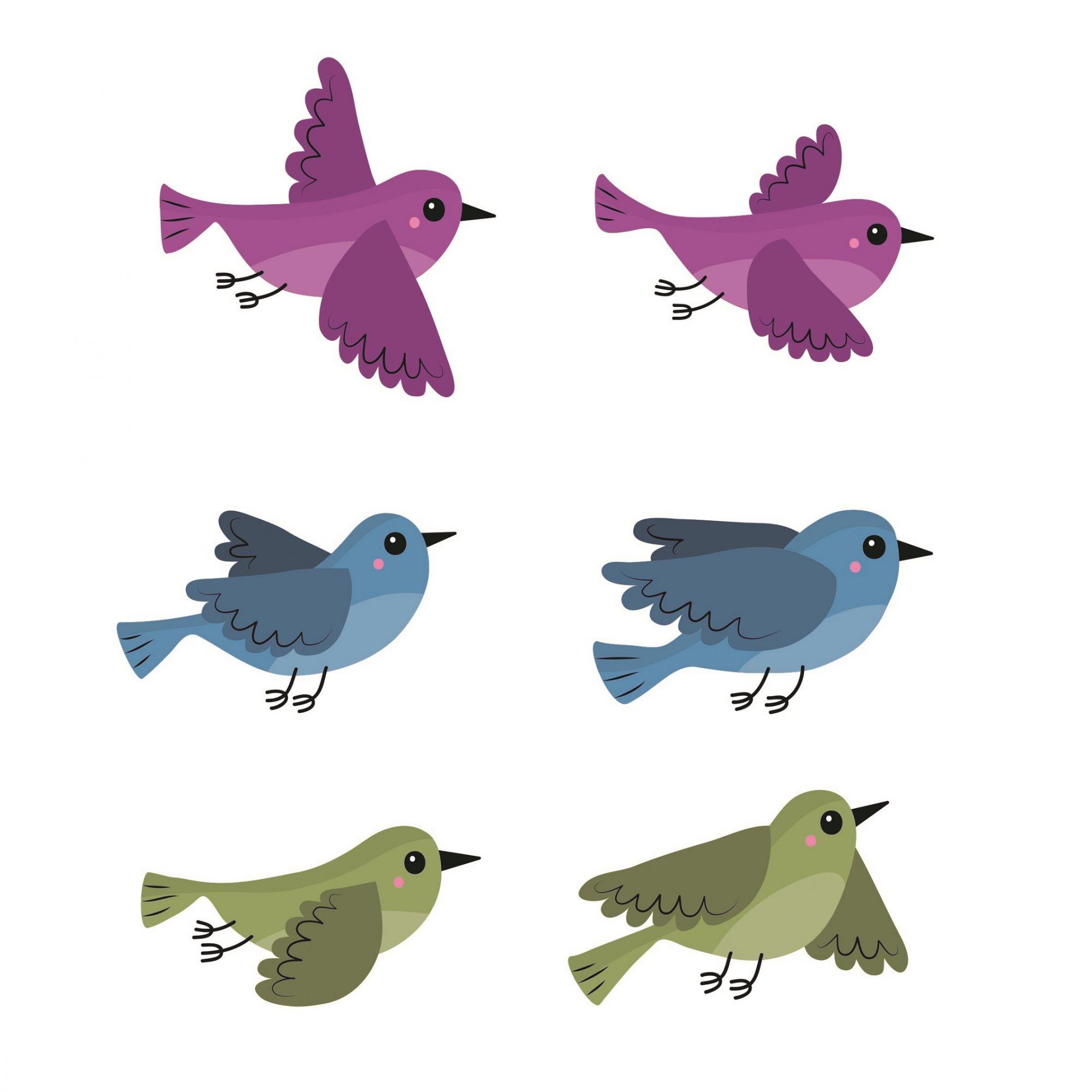 Adesivo kit 6 pássaros