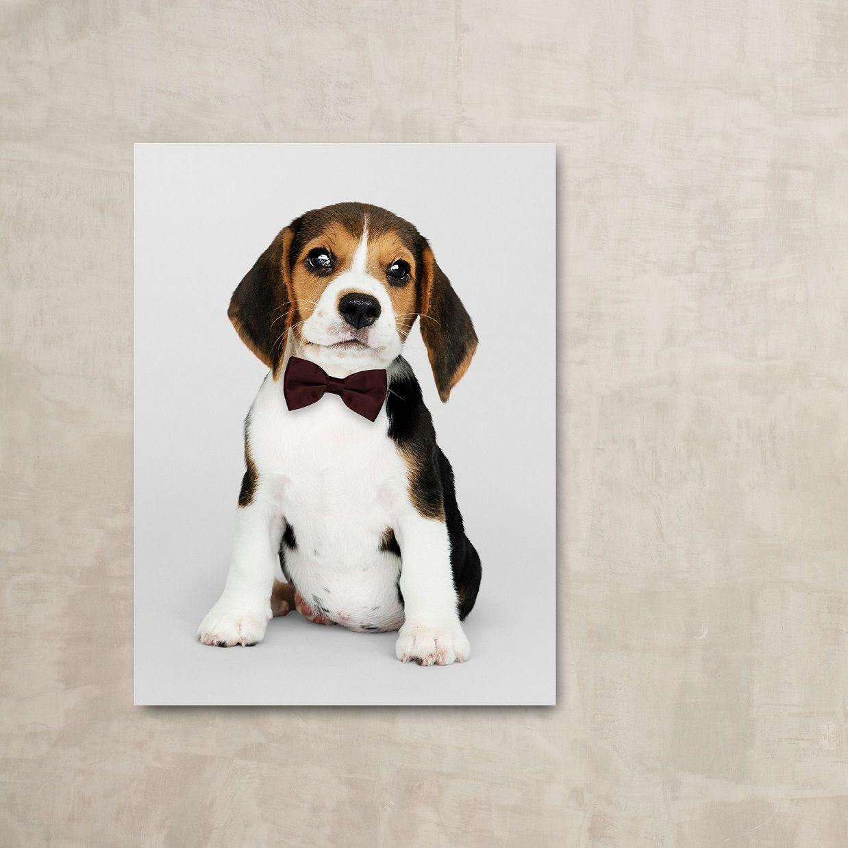 Placa decorativa PERSONALIZADA PET