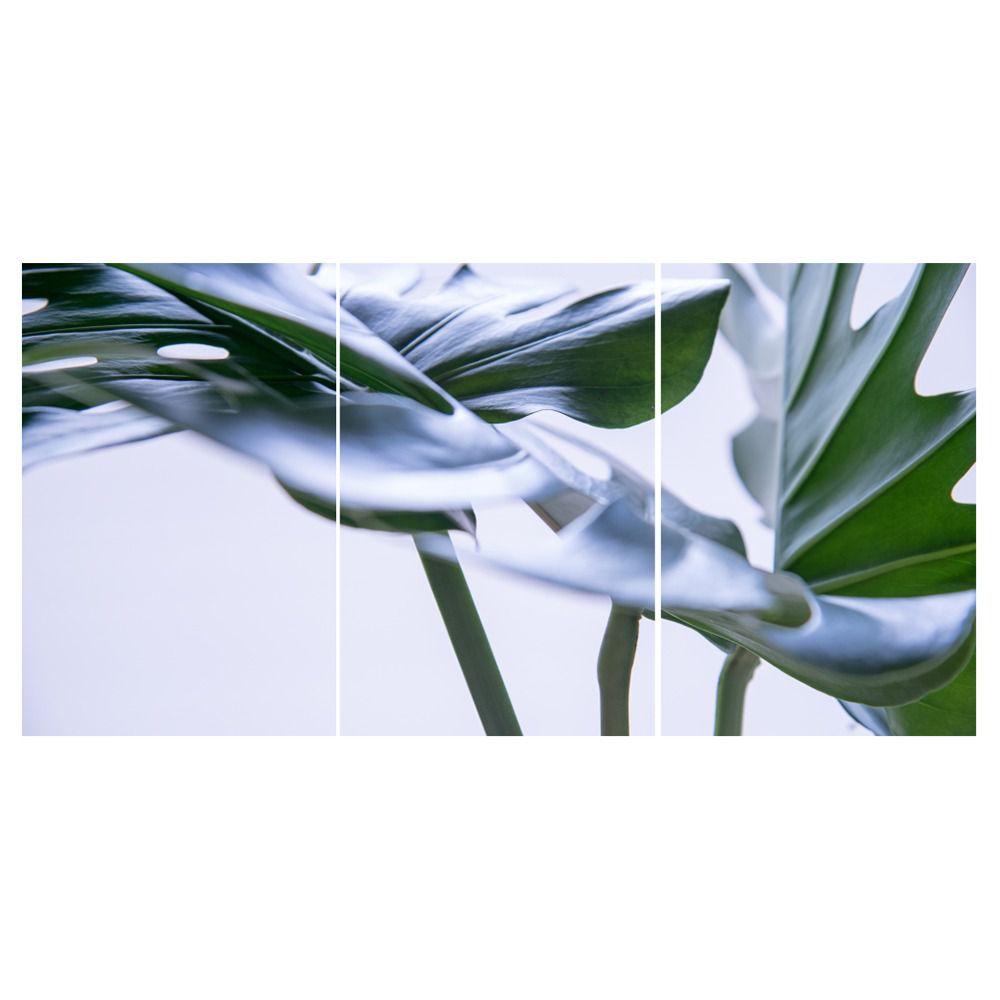 Placas decorativas em PVC - Costela de Adão