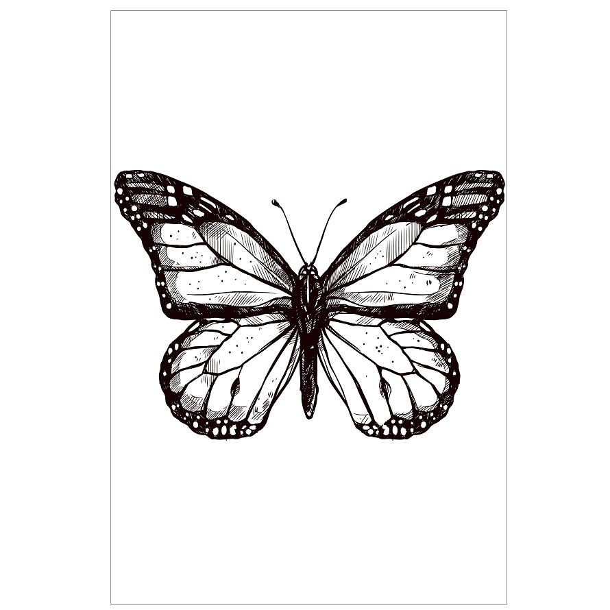 Placas decorativas em PVC - borboleta