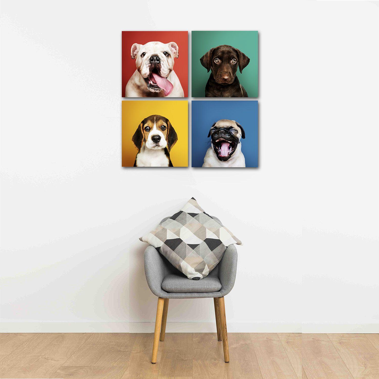 Placas decorativas em PVC - Kit 4 Cachorros  Coloridos