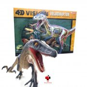 Anatomia do Velociraptor