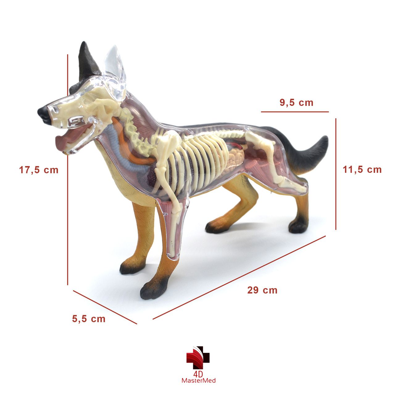 Kit Veterinário - Cachorro, Gato, Cavalo, Vaca e Porco