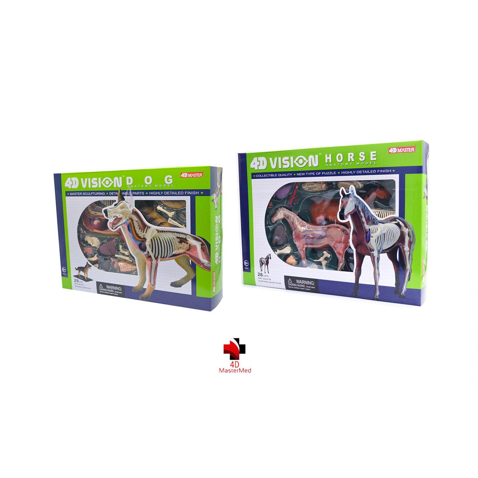 kit Veterinário para estudo - Cachorro e Cavalo