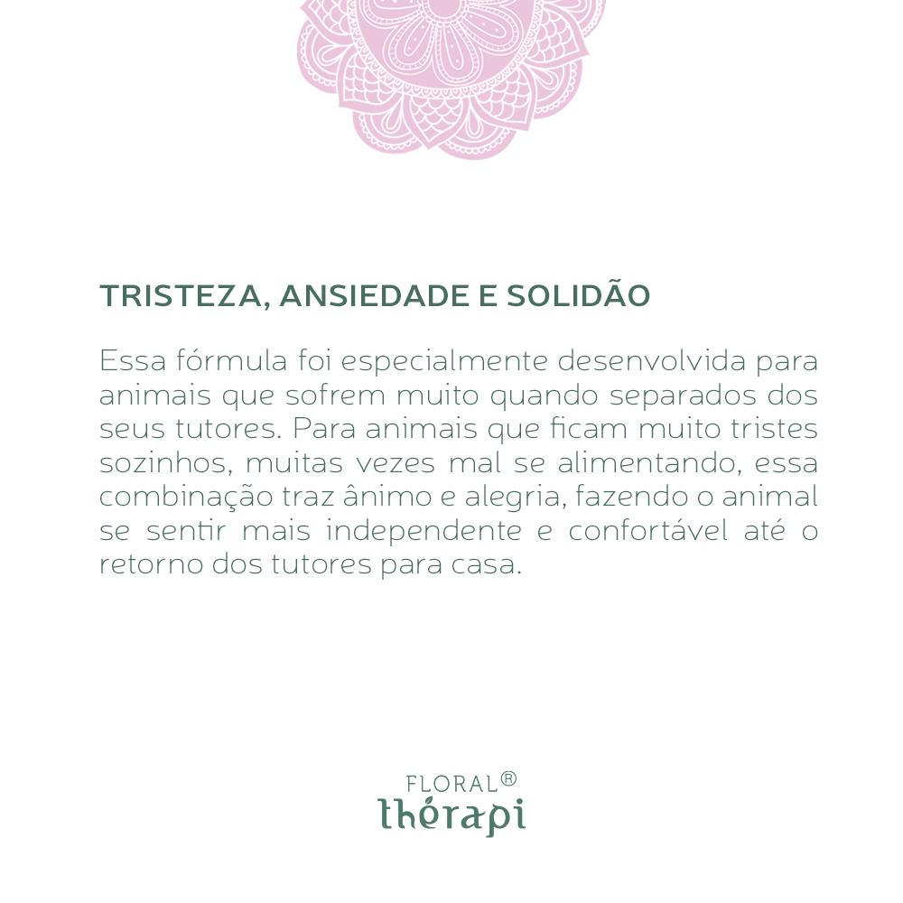 Floral Thérapi DIGNO (pets) Quantidade: 30mL Tristeza, Ansiedade e Solidão