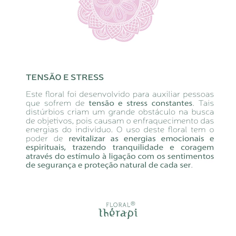 Floral Thérapi Quantidade: 30mL Tensão e Stress