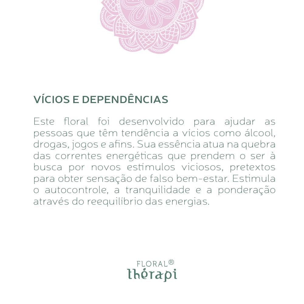 Floral Thérapi Quantidade: 30mL Vícios e Dependências