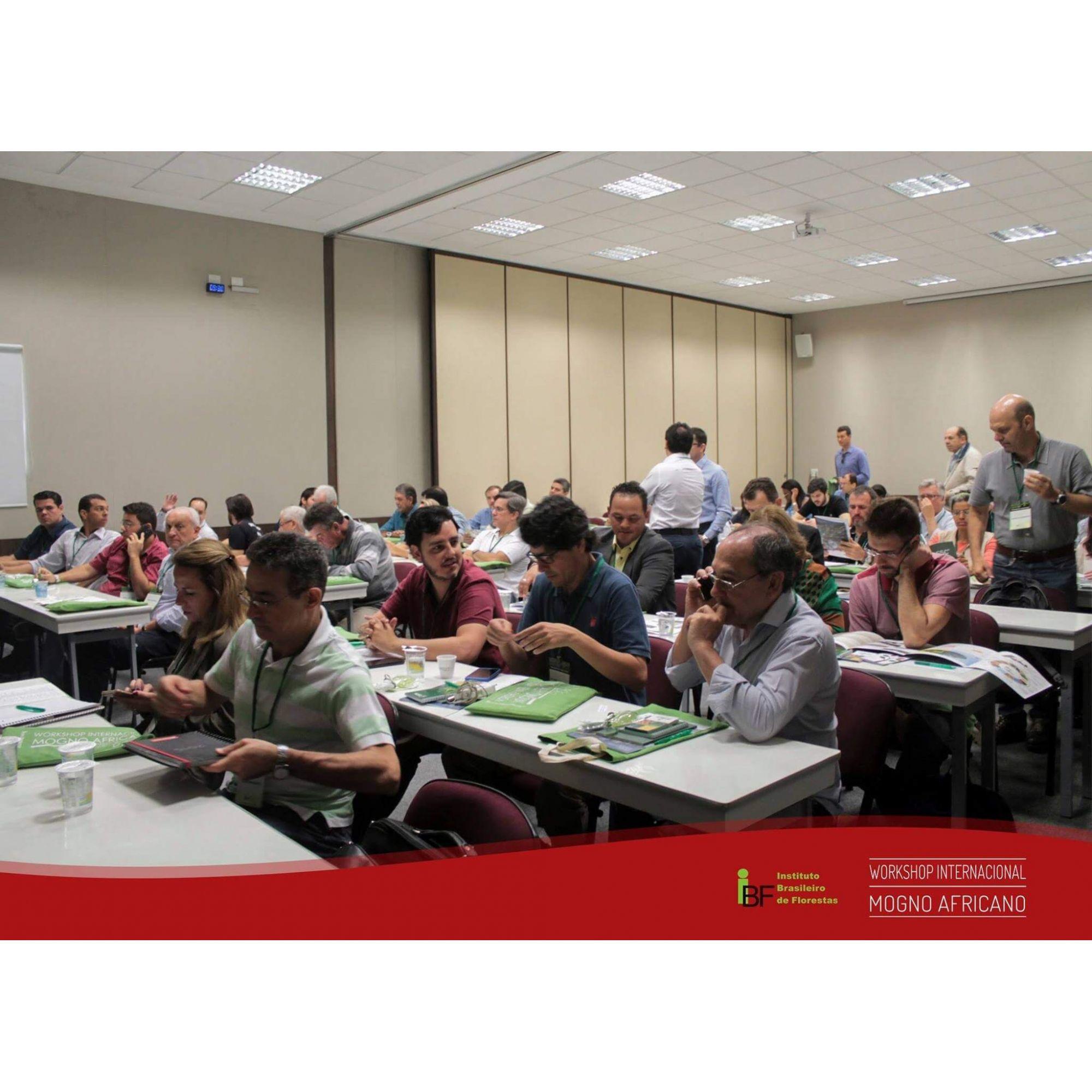 25/04/2020 - Workshop de Mogno Africano - São Paulo/SP
