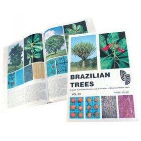 Brazilian Trees | Volume 03 - Harri Lorenzi