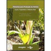Palmeiras para produção de palmito: juçara, pupunheira e palmeira real