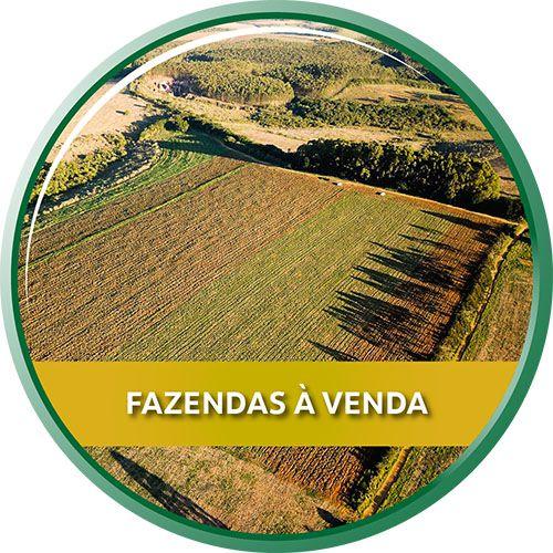 Fazendas à venda