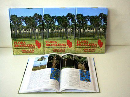 Flora Brasileira (Palmeiras) - Harri Lorenzi