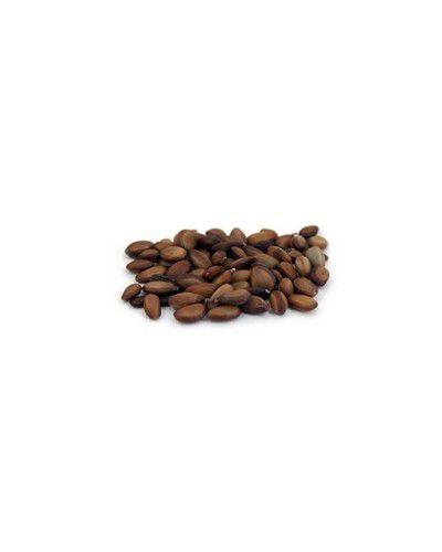 Sementes de Barbatimão - Stryphnodendron adstringens - 250g