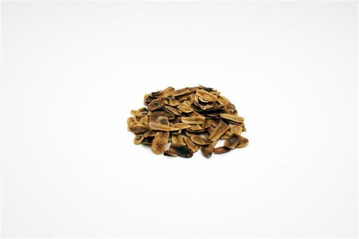 Sementes de Dedaleiro - Lafoensia pacari - 100g
