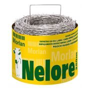 ARAME FARPADO ROLO 100 MT 1,6 MM NELORE MORLAN - Disponível em até 10 dias para entrega.