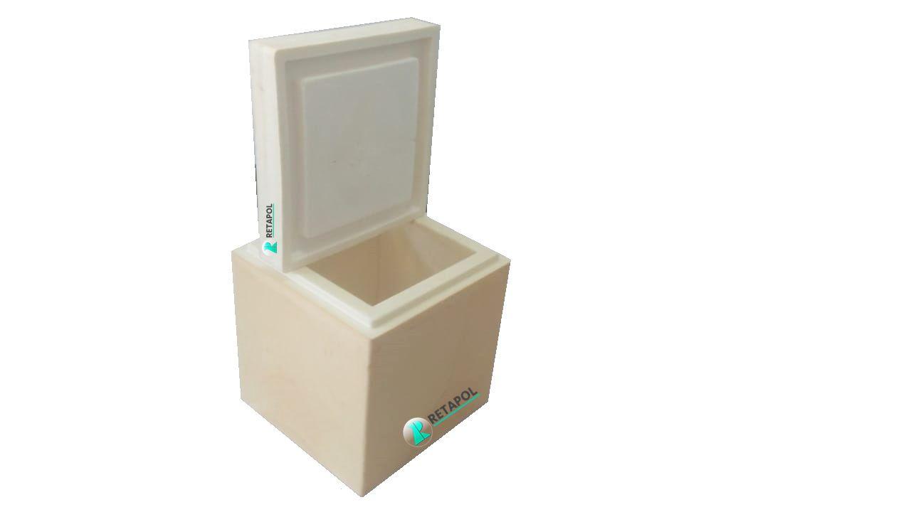 Caixa Térmica Isolante para Transporte de Alimentos a Baixa Temperatura