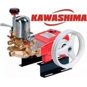 Bomba Para Pulverização Agrícola / Lavacar Kawashima S 22-f