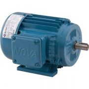 Motor Elétrico Trifásico 10cv 4polos 1740 Rpm  Baixa Rotação