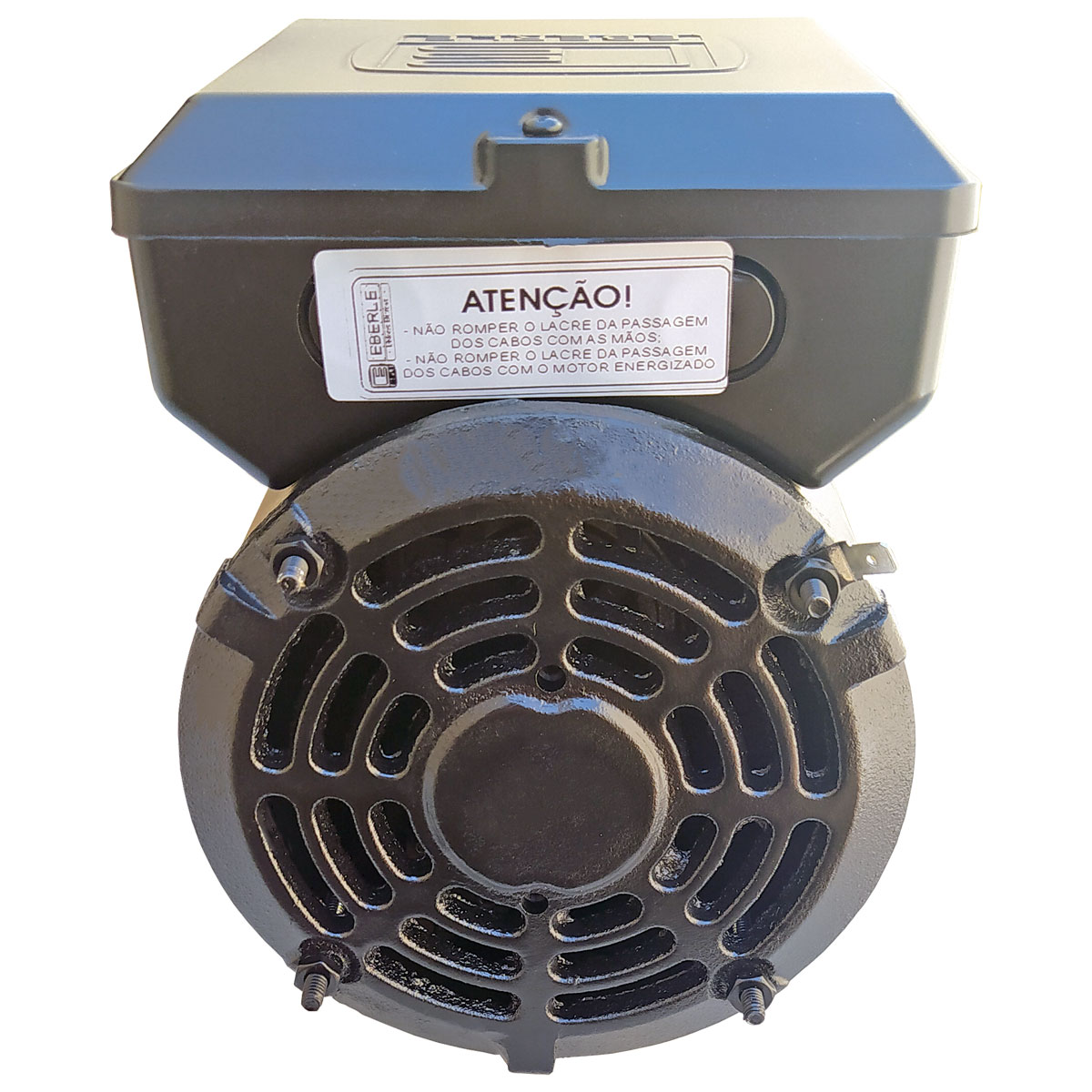 Motor Elétrico Monofásico 1cv 4 Polos 110/220 Baixa Rotação Eberle Profissional