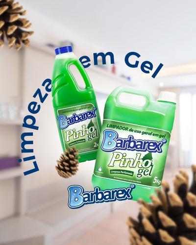 Desinfetante Em Gel Pinho Gel 2 Litros - Eliminação Odores
