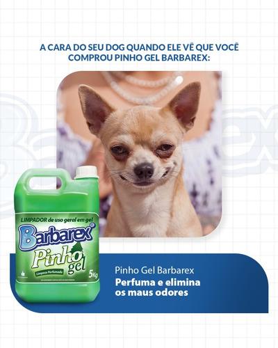 Desinfetante Em Gel Pinho Gel 5 Litros - Eliminação Odores