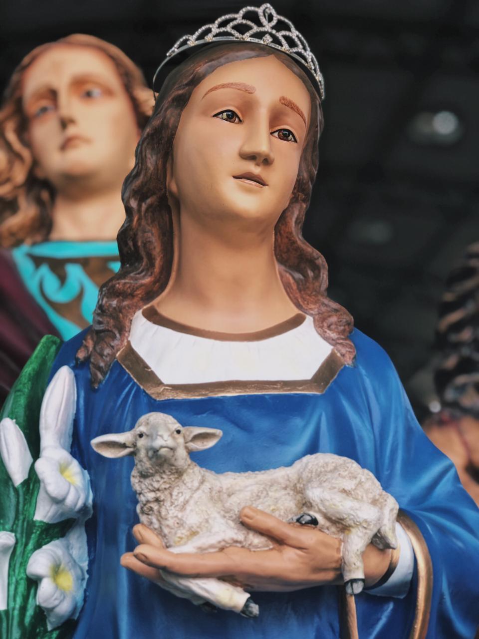 Santa Inês - 110 cm