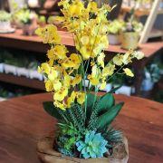 Arranjo de Orquídea Chuva de Ouro em Tronco de Madeira