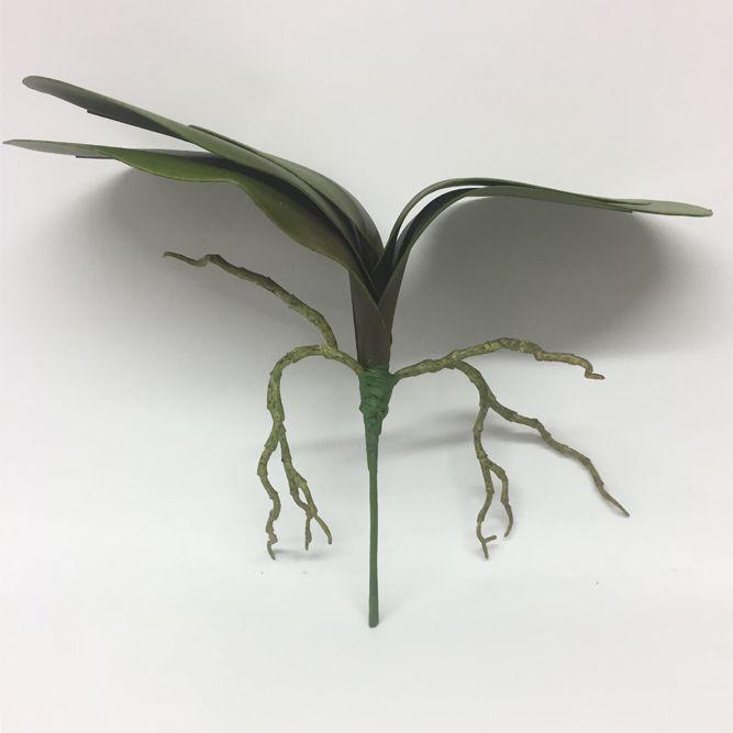 Folha de Orquídea Verde G