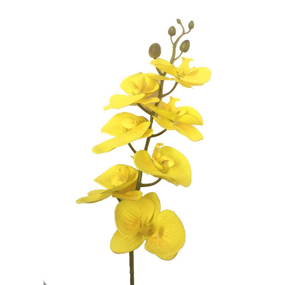 Haste Orquídea Phalaenopsis Amarelo