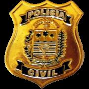 PIN BRASÃO - POLÍCIA CIVIL PIAUÍ