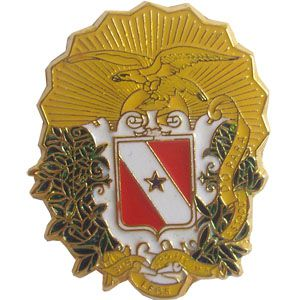 PIN BRASÃO - ESTADO PARÁ