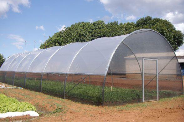 Cage Agrícola - 6,25x14