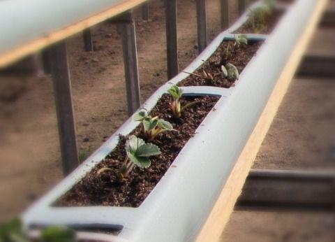 Calha de Cultivo em Substrato com 6 metros