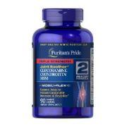 glucosamine chondroitin msm puritan's pride 2 per day formula