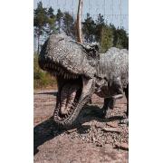 Quebra-Cabeça Cognitivo Reabilitação para Idosos - Dinossauros - 48 peças