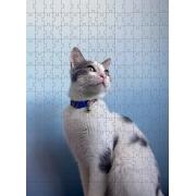 Quebra Cabeça Gato Branco de 300 peças MDL04 + Chaveiro