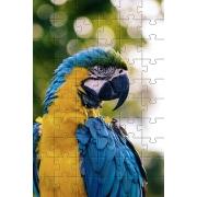 Quebra-Cabeça Pássaros Cognitivo Reabilitação para Idosos - Aves - 48 peças