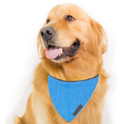 Bandana para cachorro - PET39