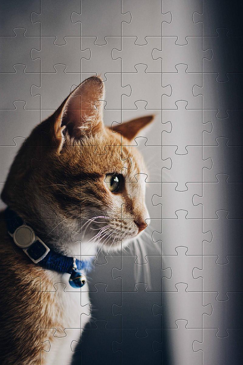 Kit 10 Quebra-Cabeça Cognitivo para Idosos - Gatos e Cachorros