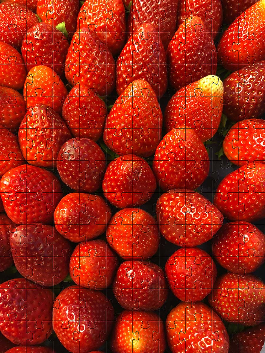 Kit Quebra-Cabeça Cognitivo para Idosos - Frutas Coloridas - 60 peças